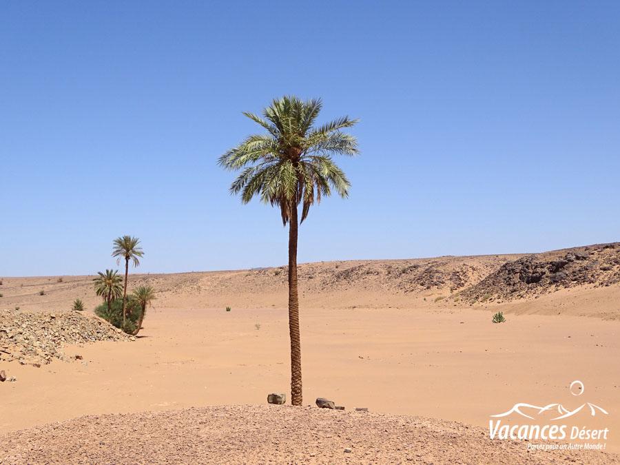 rencontre pour voyage maroc)